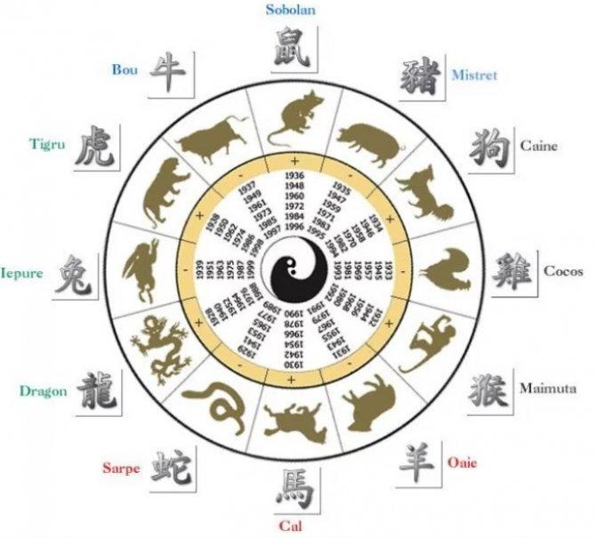 zodiac_chinezesc_2018
